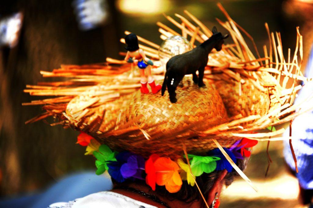 Chapeau-Tête à l'âne