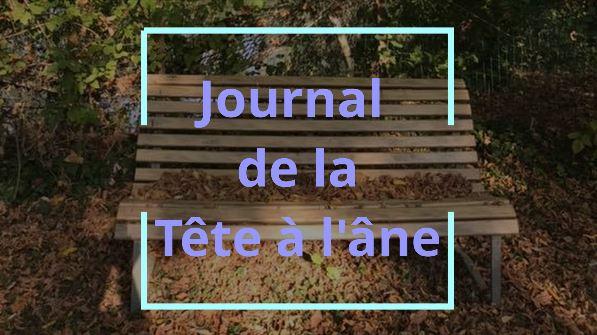 Journal télévisé – Edition 1